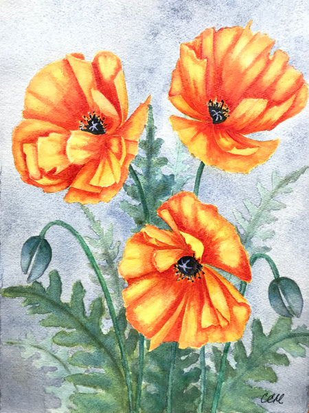 Poppies 2 - 8 x 10 print by Cathie Hamilton - Martello Alley