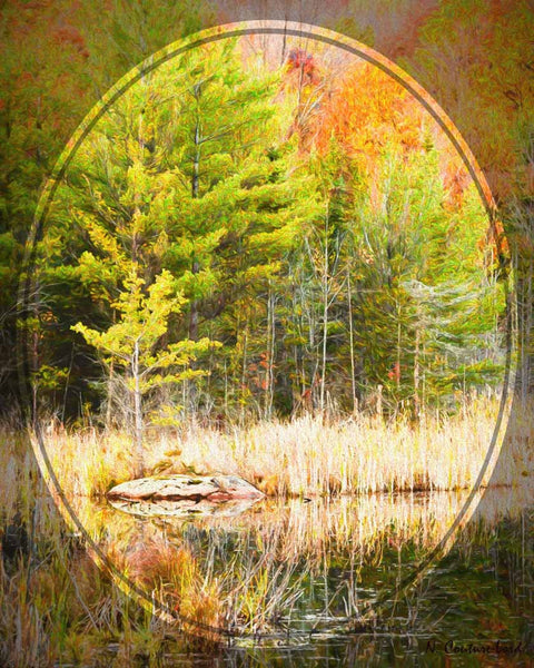 Autumn Reflection - 20 x 16 inches canvas print - 20 x 16 inches canvas prints by Nicole Couture-Lord - Martello Alley