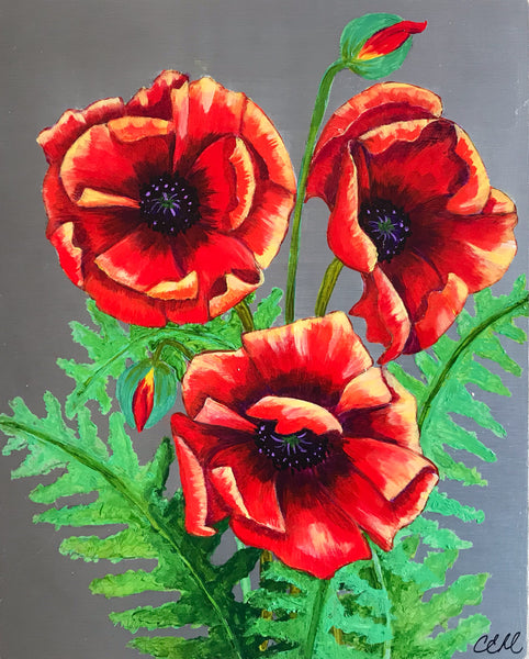 Magnificent Poppies - 8 x 10 Print by Cathie Hamilton - Martello Alley