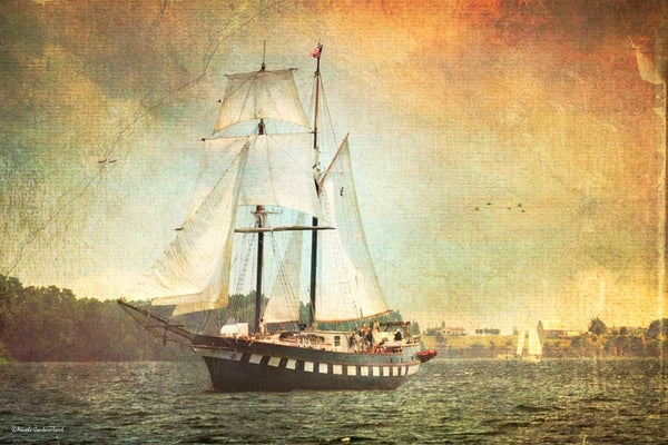 Tall ship - Fair Jeanne - print 18 x 12 - 18 x 12 inches by Nicole Couture-Lord - Martello Alley