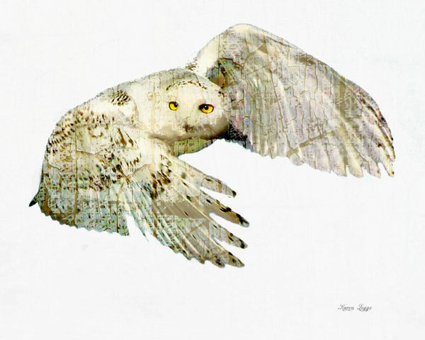 Abstract snowy owl print - 8x10 print by Karen Leggo - Martello Alley