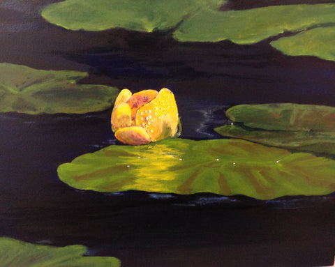 "Beaver Lake Water Lily - 8"" x 10"" acrylic on birch panel by Lori Kallay - Martello Alley"