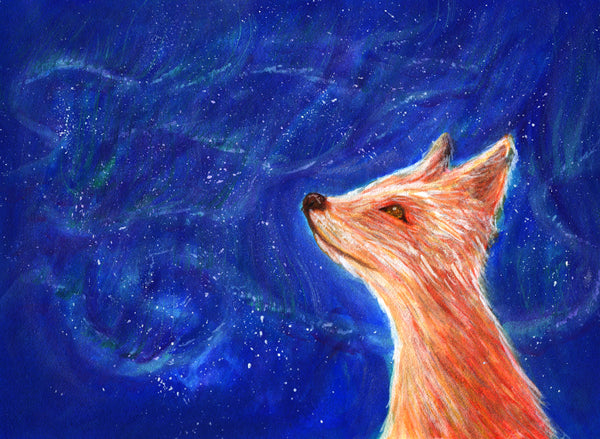 Starry Night Fox print - Print by Heidi Larkman - Martello Alley