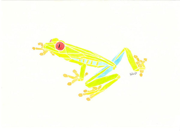 Frog Print - Wesley's Watercolour - Print by Wesley Dossett - Martello Alley