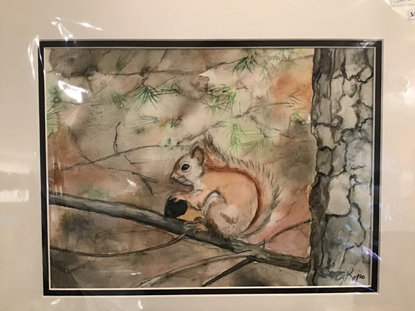 Red Squirrel with Acorn - Original Watercolour Julie Kojro