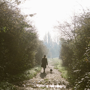 The Importance of getting outside to walk | Flourish Magazine