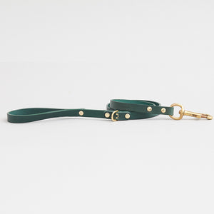 kintails leather dog lead green thin