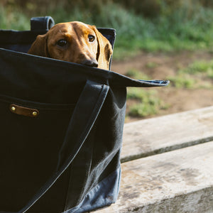 Dog Carrier Bag | Navy