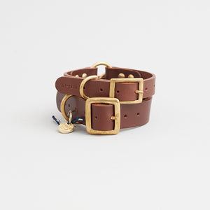 kintails leather dog collar brown group image