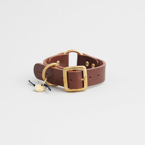 kintails leather dog collar brown medium