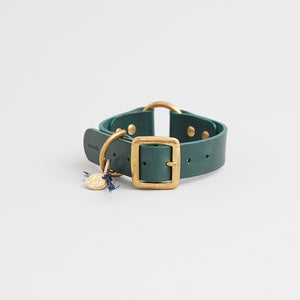 kintails leather dog collar green medium
