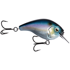 13 Fishing Scamp Square Bill Crankbait Fantasy Shad