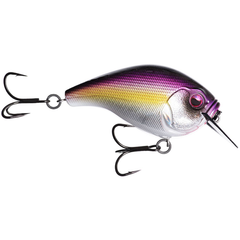 13 Fishing Scamp Square Bill Crankbait Purple Nurple