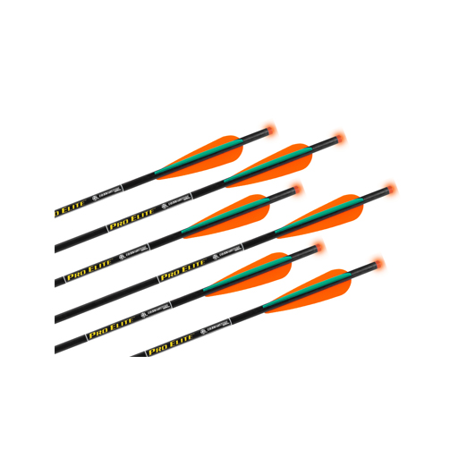 TenPoint Pro Elite Omni-Brite Lighted 20in Carbon Arrows (425gr-6pk)
