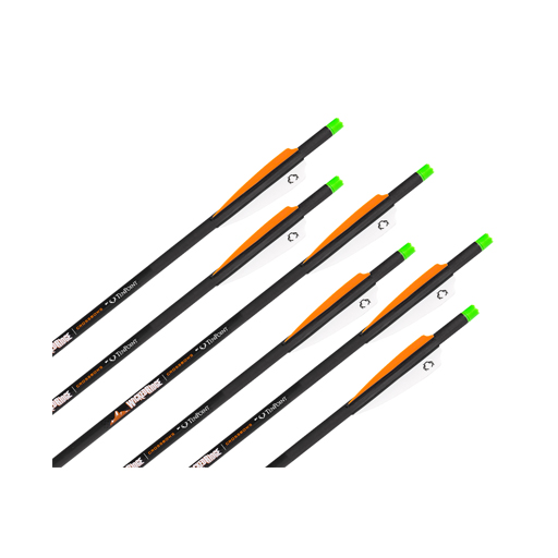 "Wicked Ridge 6-Pack Carbon 20"" Arrows"