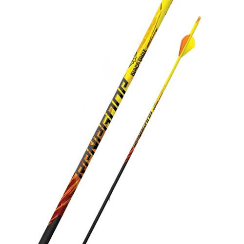 Black Eagle Renegade 6pk Carbon Arrows