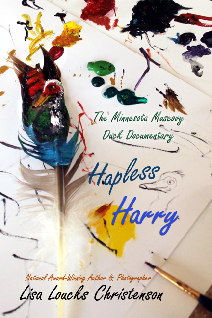 Hapless Harry: The Minnesota Muscovy Duck Documentary  | Paperback