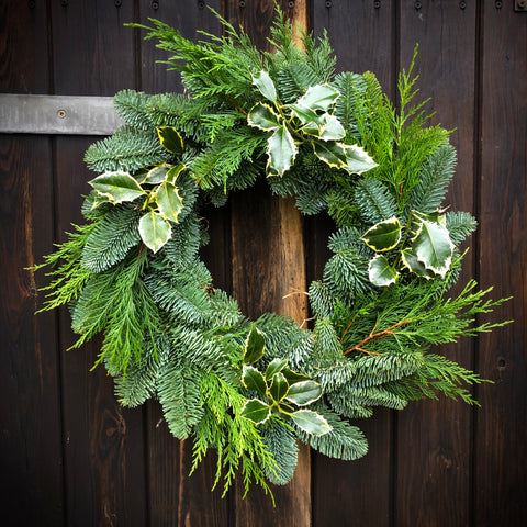 Large Nordman Fir Christmas Wreath