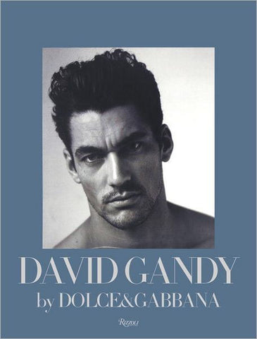 DAVID GANDY Dolce Gabbana Peter Howarth RIZZOLI HARDBACK Book
