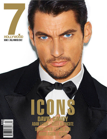 7 Hollywood Magazine 2012 DAVID GANDY Celine Dion BELLA HEATHCOTE Anne V. ADAM LEVINE