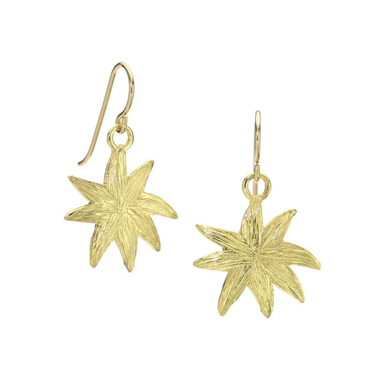 Hope Star Earrings - A Reminder of Your Beauty Within