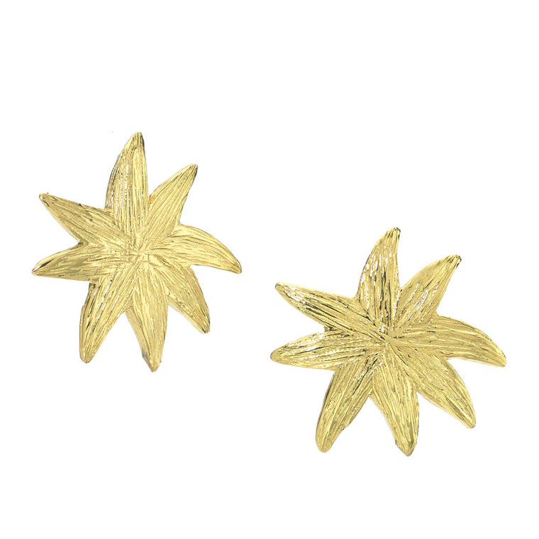 Hope Star Post Earrings in Gold - A Reminder of Your Beauty Within