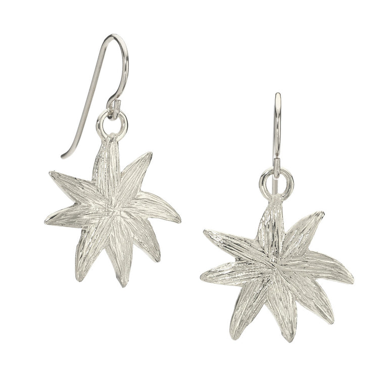 Silver Hope Star Earrings - A Reminder of Your Beauty