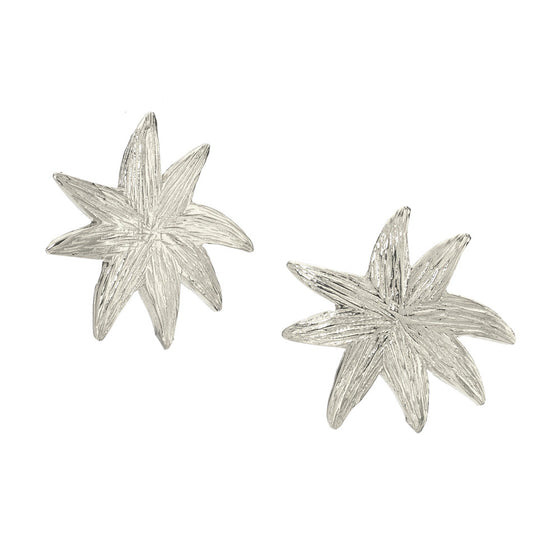 Hope Star Post Earrings in Silver - A Reminder of Your Beauty