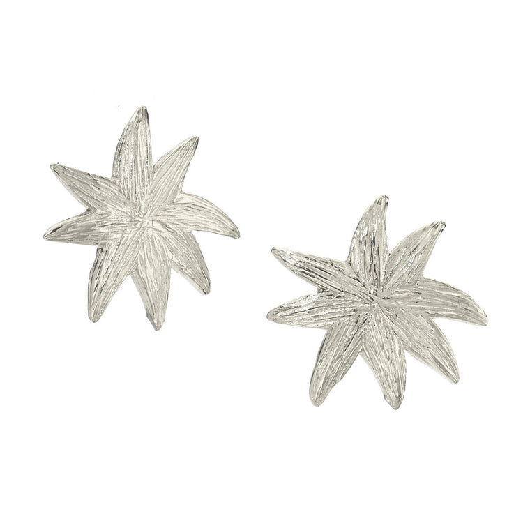 HopeStar Post Earrings in Silver - A Reminder Beauty begins Within - PRICE IS $32.50 WHEN USE CODE SUMMERFINAL50 FOR 50% OFF