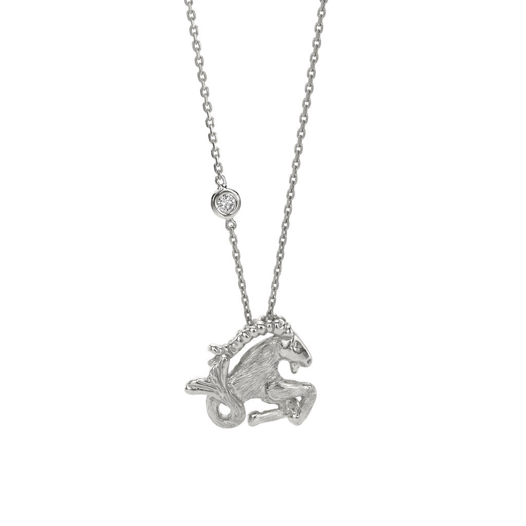 Capricorn zodiac necklace in silver price is 109 with code capricorn zodiac necklace in silver price is 109 with code vault50 aloadofball Choice Image