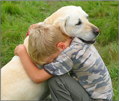 How PETS BENEFIT Your Child's Health & Heal Emotional trauma
