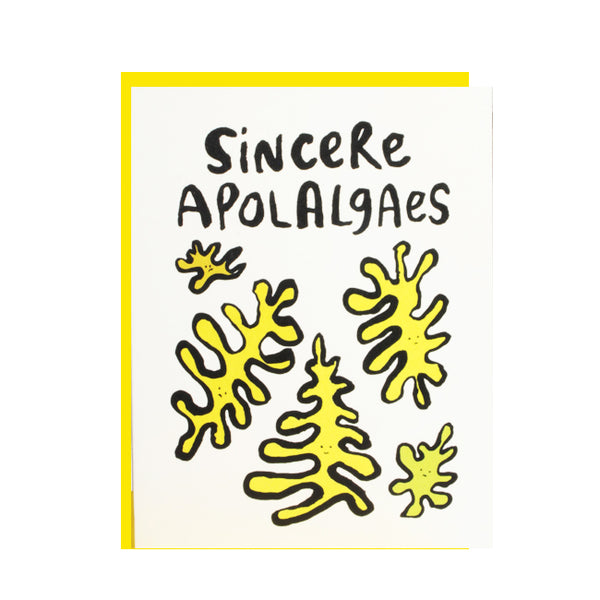 Sincere Apol_algaes Greeting Card