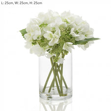 Hydrangea in Glass - Medium