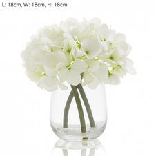 Hydrangea in Glass - Small