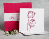 Floral Tulip - Boxed Set