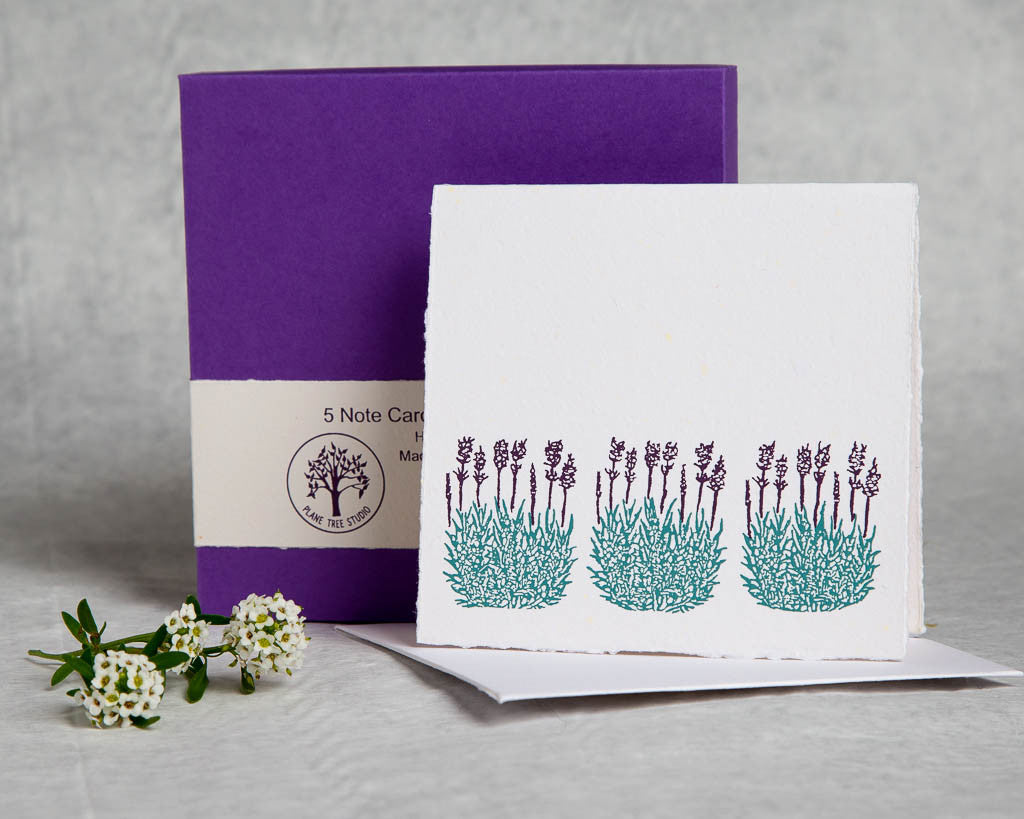 Floral Lavender  - Boxed Set