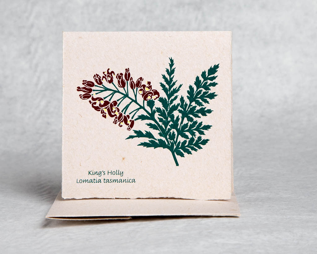Beautifully boxed cards