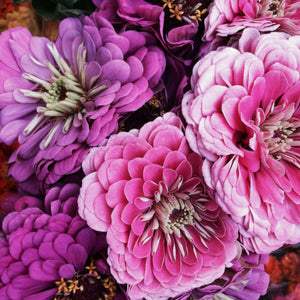 See Jane Inspired - Finding floral inspiration at New York's Union Square Green Market