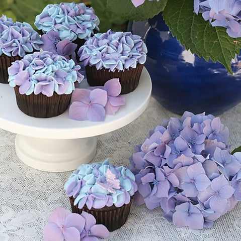 Glorious Treats Hydrangea Cupcakes via Jane Summers See Jane Blog