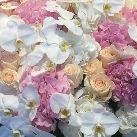 Flower wall with blush and peach roses white orchids and pale pink hydrangeas