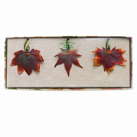 Iridescent Copper Dipped Maple Leaves Set