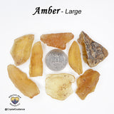 Amber Copal raw rough natural stone — multiple sizes available