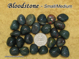 Bloodstone tumbled stone — multiple sizes available