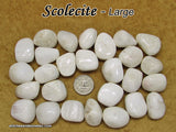 Scolecite tumbled stone — multiple sizes available