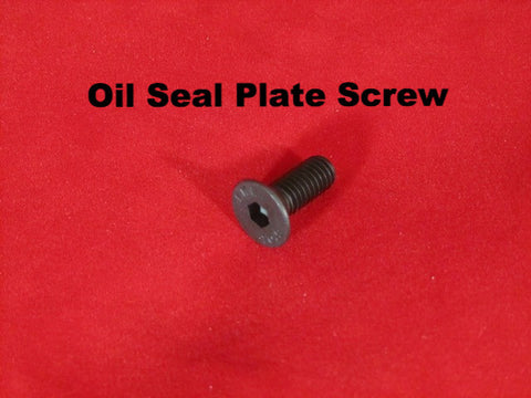 Lambretta Oil Seal Plate Screw M6 with Socket Head