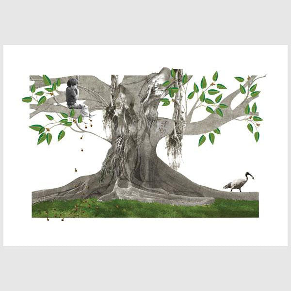 Alphabetical Sydney Print - M is for Moreton Bay Fig