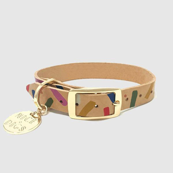 Collar - Jungle Confetti - Multi - Extra Large