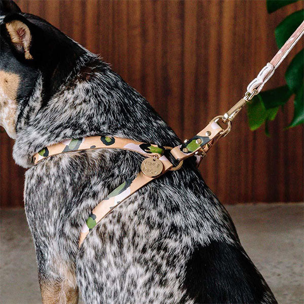 Animal Evergreen Harness