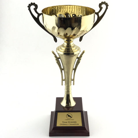 Championship  Cup Trophy