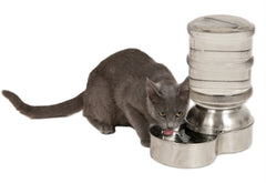 Cat Bowls/Feeders